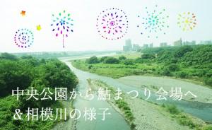 【厚木の鮎まつり特集】中央公園から花火大会会場まで