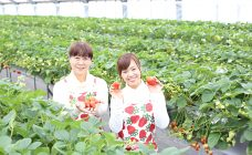 strawberry_05