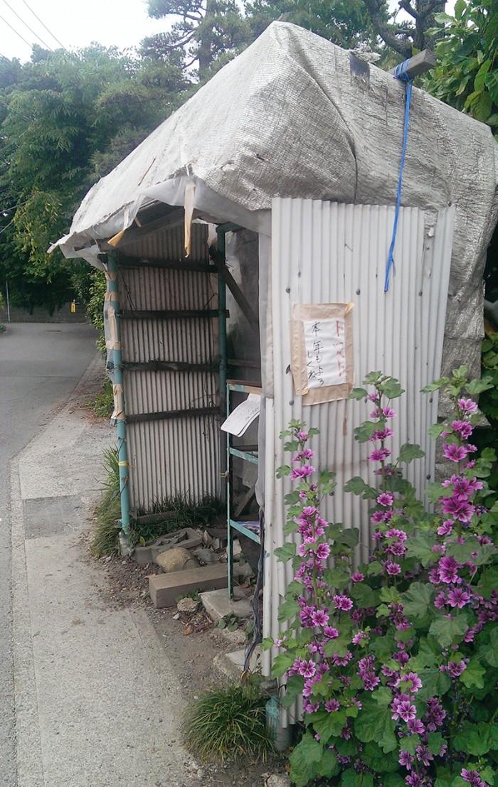 IMAG2285[1]