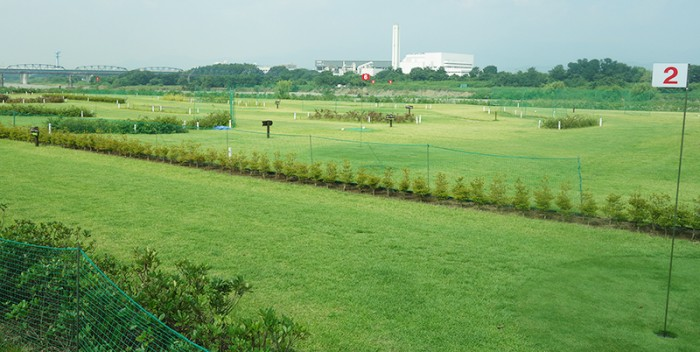相模三川公園 鮎まつり