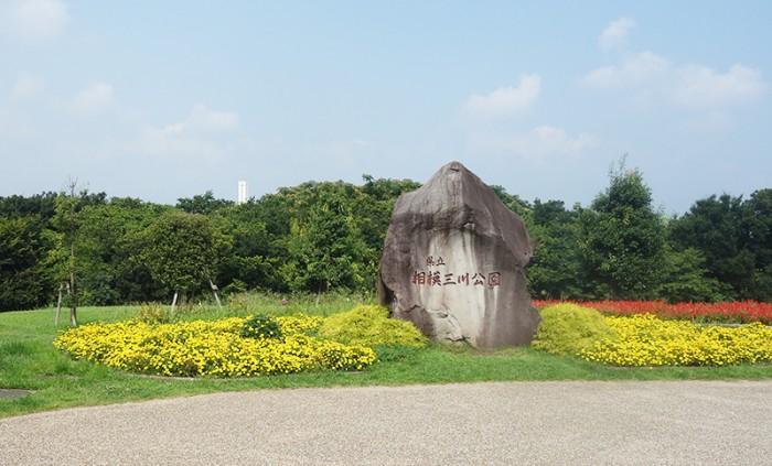 神奈川県立相模三川公園