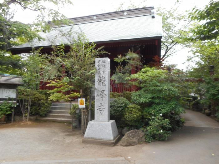 yayoi-11