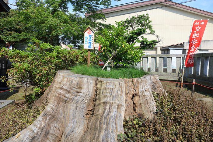 pic_aruka-shrine09