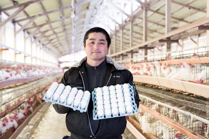 海老名市の清水鶏園の清水敦司さん
