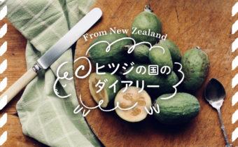 NZに行ったら必ず食べたい珍しいフルーツ編【ヒツジの国のダイアリーVol.6】
